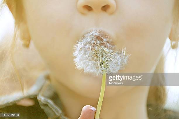 Close-up of girl blowing dandelion clock