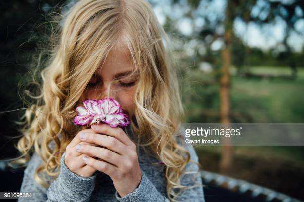 close-up of girl smelling flower - children only stock photos and pictures