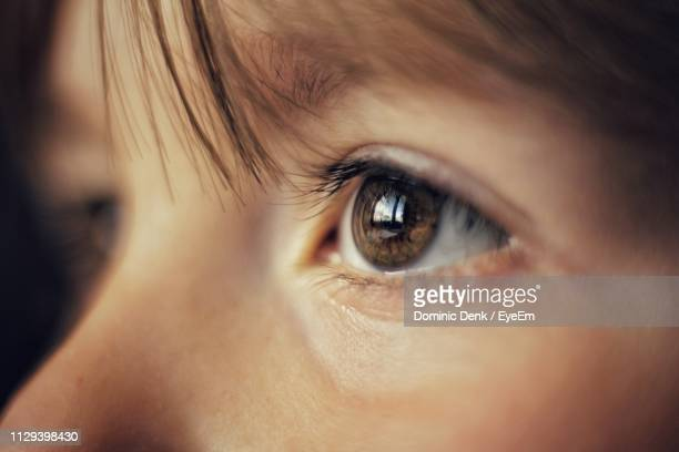 close-up of girl with brown eye - 眼 ストックフォトと画像