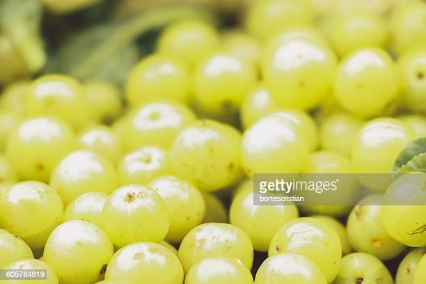 close-up of gooseberries - bortes cristian stock-fotos und bilder