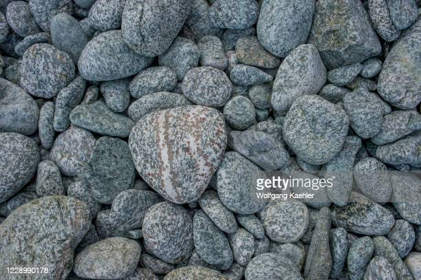 Close-up of granite pebbles with kelp on beach in bay at George Island, off Chichagof Island, Tongass National Forest, Alaska, USA.
