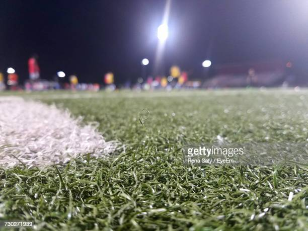 Close-Up Of Grass On Field Against Sky At Night