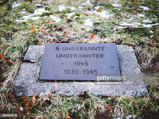 close-up of gravestone in cemetery in berlin - lápida fotografías e imágenes de stock