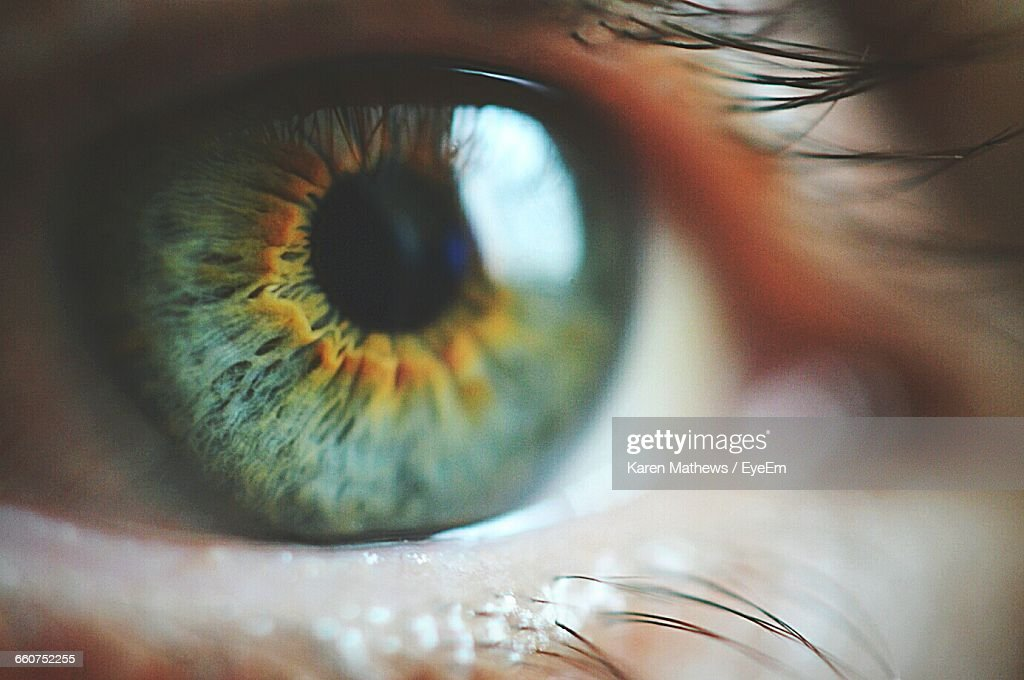 Close-Up Of Green Eyes : Stock Photo