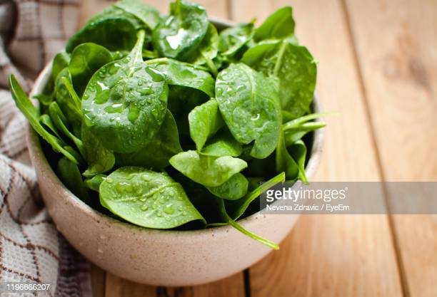close-up of green leaves in bowl on table - spinach stock pictures, royalty-free photos & images