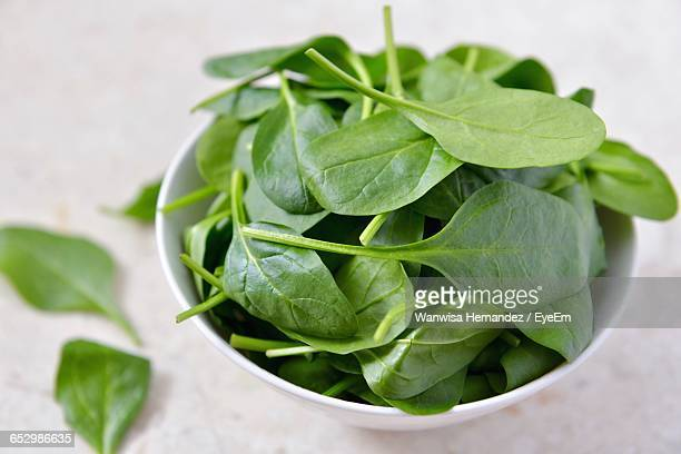 close-up of green leaves - spinach stock pictures, royalty-free photos & images