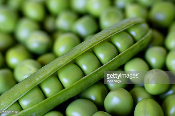 Close-up of green peas