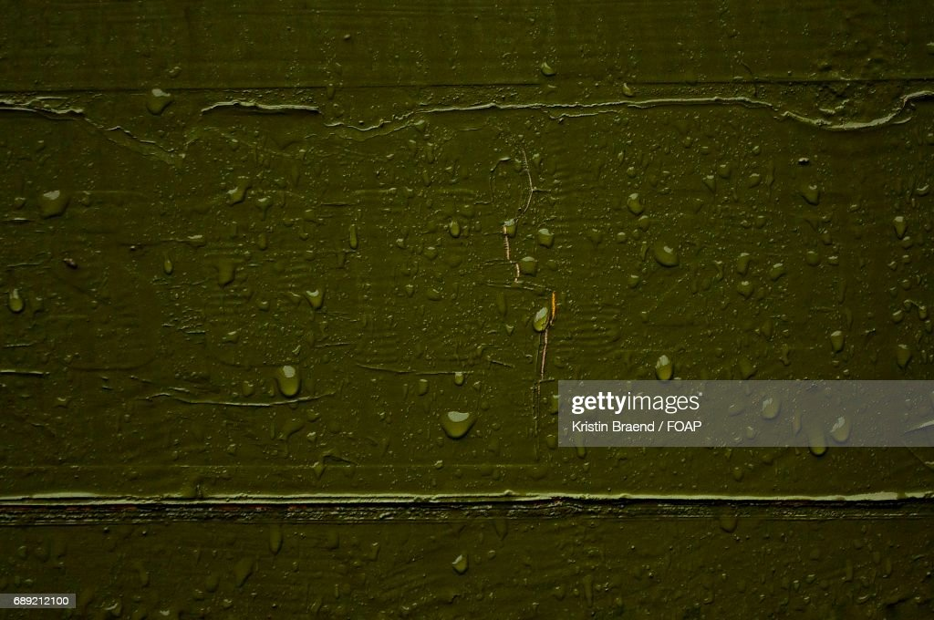 Close-up of green textured background : Stock Photo