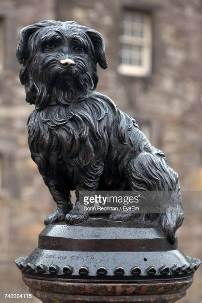 close-up of greyfriars bobby statue against building - named animal ストックフォトと画像