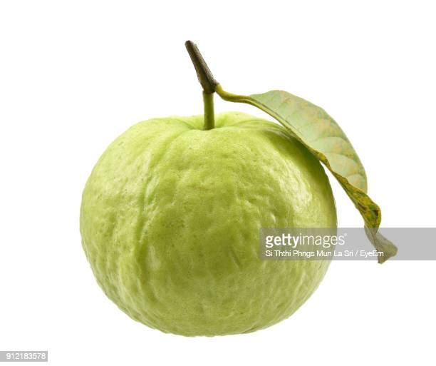 close-up of guava against white background - guava fruit stock photos and pictures