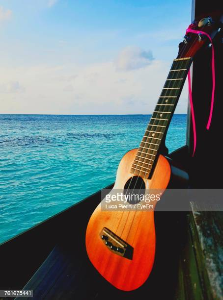 Close-Up Of Guitar By Sea Against Sky