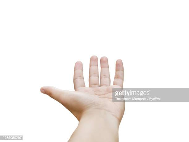 close-up of hand gesturing against white background - 手のひら ストックフォトと画像