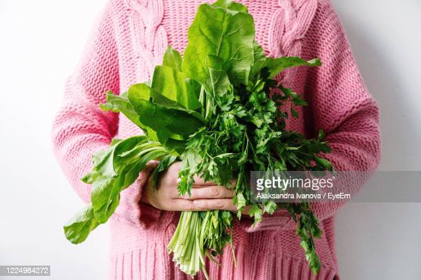 close-up of hand holding bouquet of leafy greens - leaf vegetable stock pictures, royalty-free photos & images