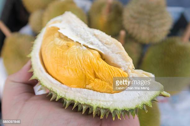 Close-Up of hand holding D2 Grade Durian - Malaysia
