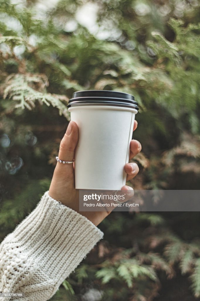 Close-Up Of Hand Holding Disposable Cup : Stock Photo