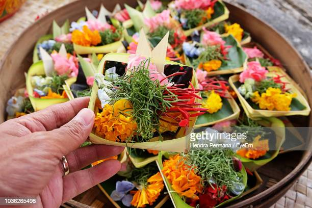 close-up of hand holding flowers in container - denpasar stock pictures, royalty-free photos & images