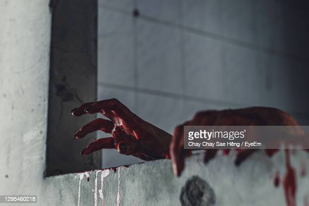 close-up of hand holding leaf against wall - murderer stock pictures, royalty-free photos & images