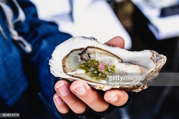 close-up of hand holding mussel - oyster shell stock photos and pictures