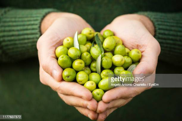 close-up of hand holding olives - extra virgin olive oil stock pictures, royalty-free photos & images