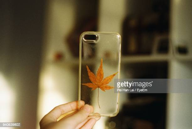 close-up of hand holding phone cover with autumn leaf at home - phone cover stock pictures, royalty-free photos & images