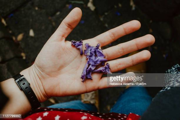 Close-Up Of Hand Holding Purple Flowers