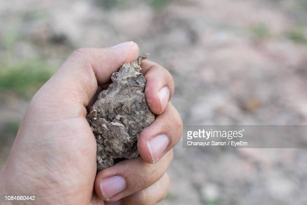 close-up of hand holding stone - chanayut stock photos and pictures