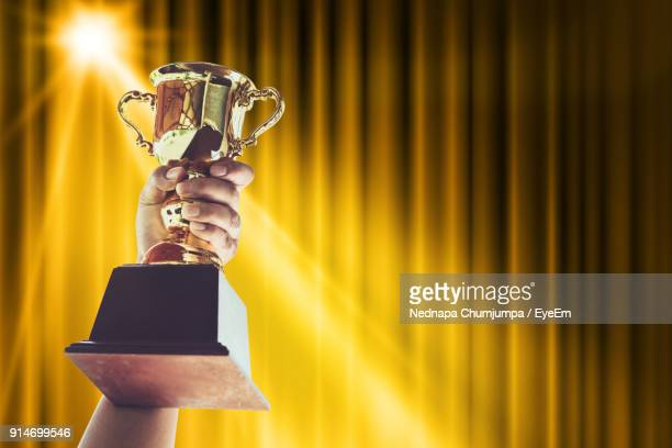 close-up of hand holding trophy - awards stock photos and pictures