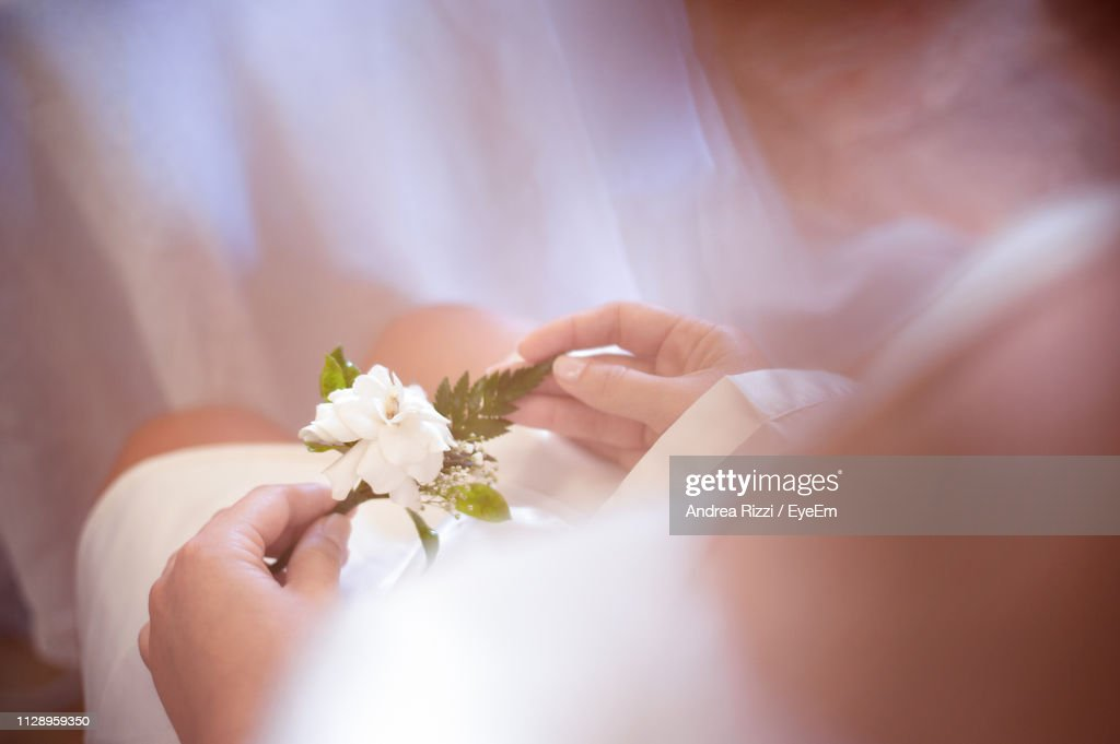 Close-Up Of Hand Holding White Flower : Foto de stock