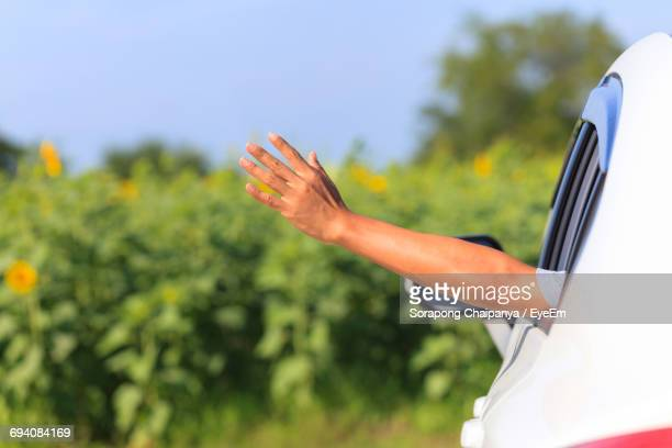 close-up of hand waving from car - waving stock pictures, royalty-free photos & images