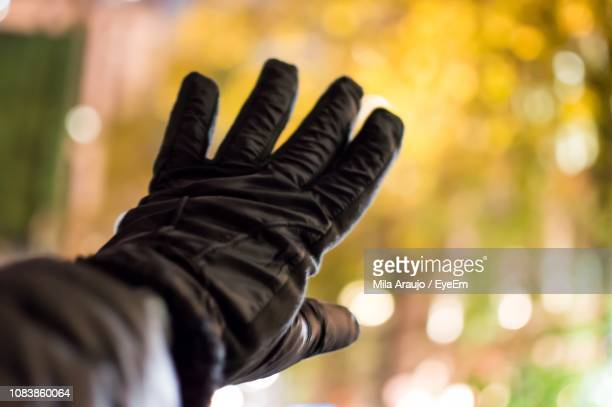 Close-Up Of Hand Wearing Glove