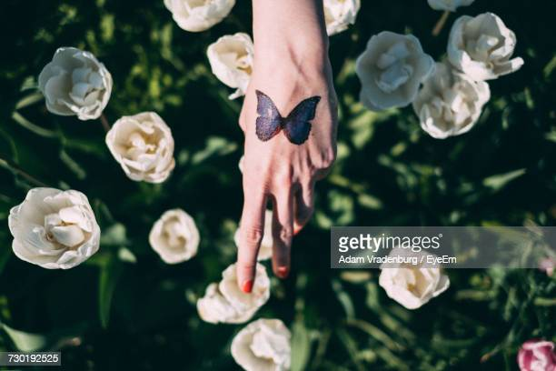 Close-Up Of Hand With Tulips