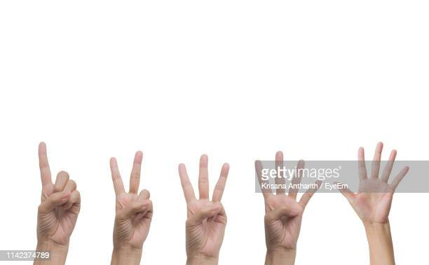 close-up of hands gesturing against white background - five people stock pictures, royalty-free photos & images