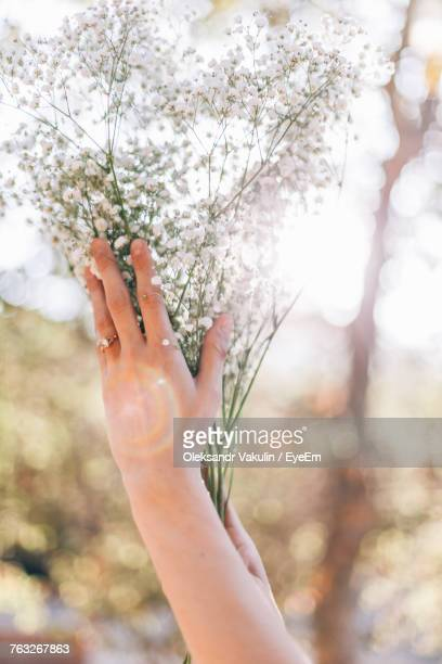 Close-Up Of Hands Holding Bouquet