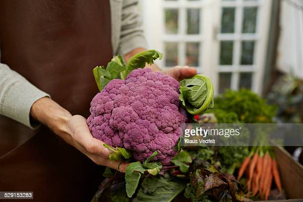 Close-up of hands holding purple cauliflower