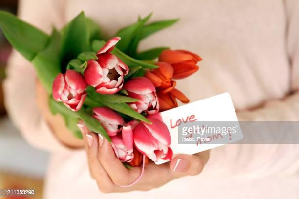 close-up of hands holding tulips for mom - muttertag blumen stock-fotos und bilder
