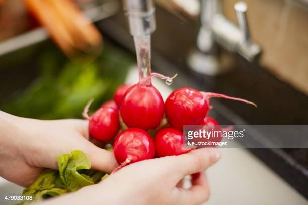 クローズアップの手の洗浄レッド radishes