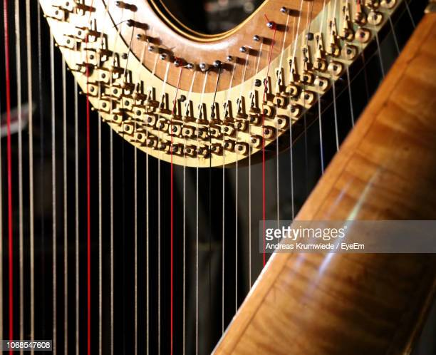 close-up of harp - stringed instrument stock pictures, royalty-free photos & images