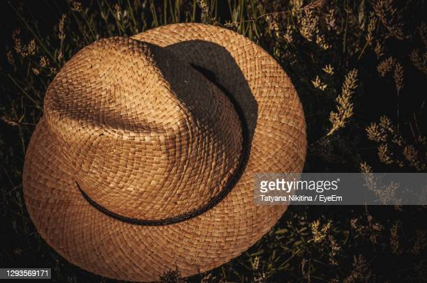 close-up of hat on field - nikitina stock pictures, royalty-free photos & images