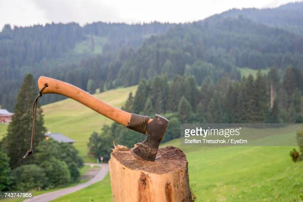 Close-Up Of Hatchet On Chopping Block Against Trees On Field In The Mountains