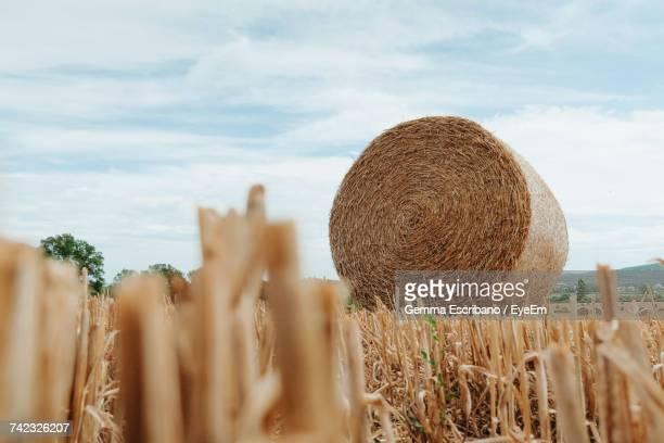 Close-Up Of Hay Bales On Field Against Sky