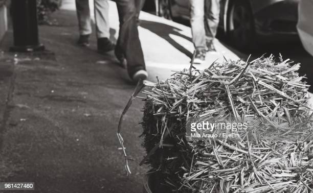 Close-Up Of Hay On Road