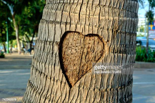 Close-Up Of Heart Shape Carved On Tree Trunk