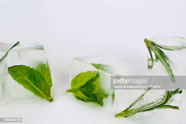 close-up of herb ice cubes against white background - ミント ストックフォトと画像