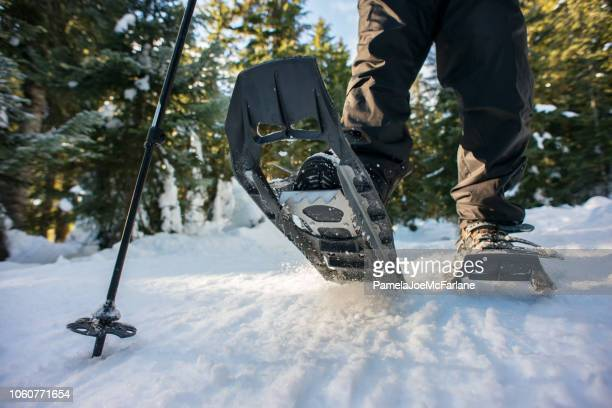 closeup of hiker snowshoeing on trail through winter forest, canada - winter sport stock pictures, royalty-free photos & images