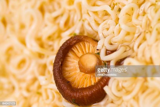 close-up of hon-shimeji mushroom over noodles - shimeji mushroom stock pictures, royalty-free photos & images