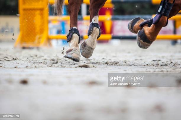 Close-Up Of Horses Hooves In Competition
