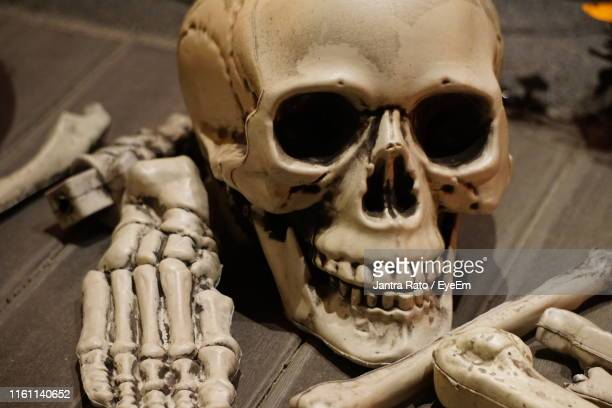 Close-Up Of Human Bones On Table