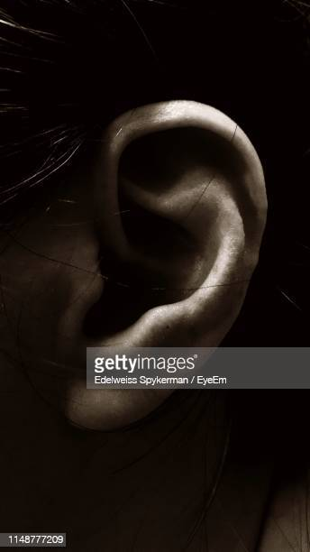 close-up of human ear - ear stock pictures, royalty-free photos & images