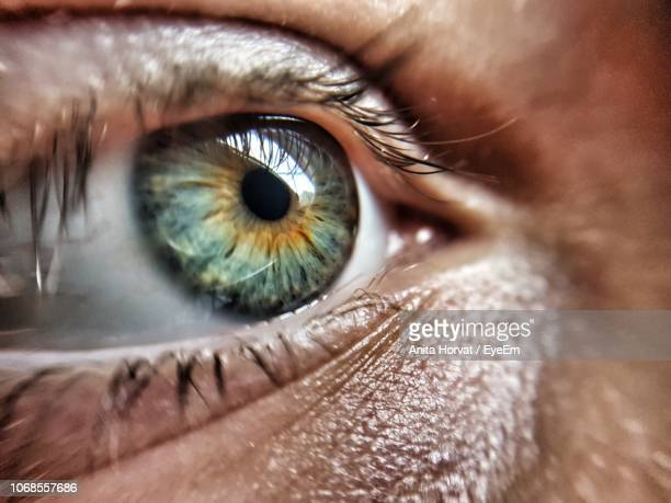close-up of human eye looking away - human body part stock pictures, royalty-free photos & images