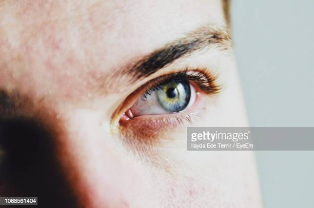 close-up of human eye looking away - adults only stock pictures, royalty-free photos & images